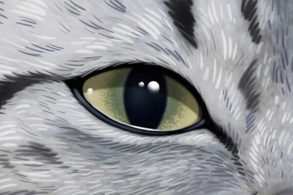 closeup-24